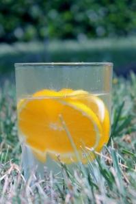 Orange Lemon Water